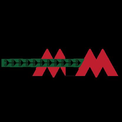 Femem logo 600x600 color