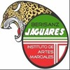 Jaguares be
