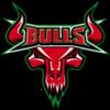 Bulls new logo