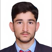 Faisal khan (picture)