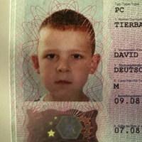 David tierbach