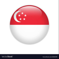 Singapore flag on button vector 23648199
