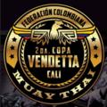 Logo copa vendetta 2