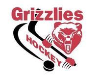 Addison grizzlies