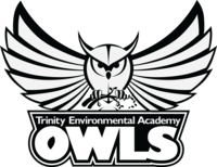 Triea owl black and white