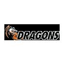 Idea mascot san benito dragons