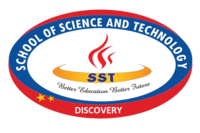 Sst discovery