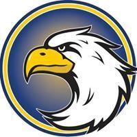 Sanchez 2017 logo