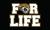 Jacksonville jaguars de por vida 3ftx5ft banderas bandera 100d poli eacute
