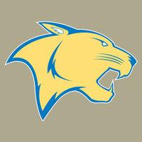 Carver cougar1