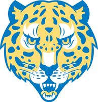 Idea judson jaguars (1)