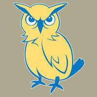 South flores owl1