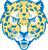 Idea judson jaguars
