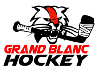 Gb hockey logo