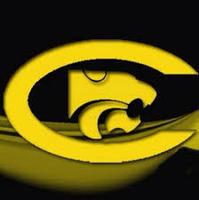 Ctx wildcats logo
