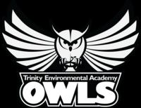 Triea owl black and white