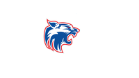 Hsi wildcat logo