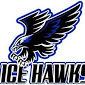 Ice hawk