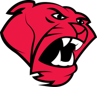 Stem mascot cougar color (1)