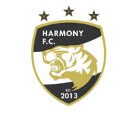 Hsa tiger logo