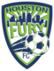 Copy of ss houston fury logo
