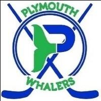 Plymouth whalers logo sticks