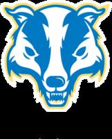 Team logo internet