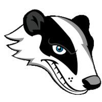 Clare badgers