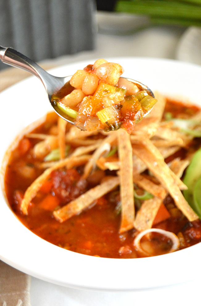 White bean tortilla soup that's red with green onion and tortilla strips