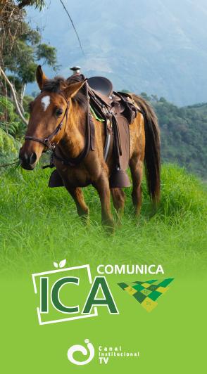 ICA Comunica