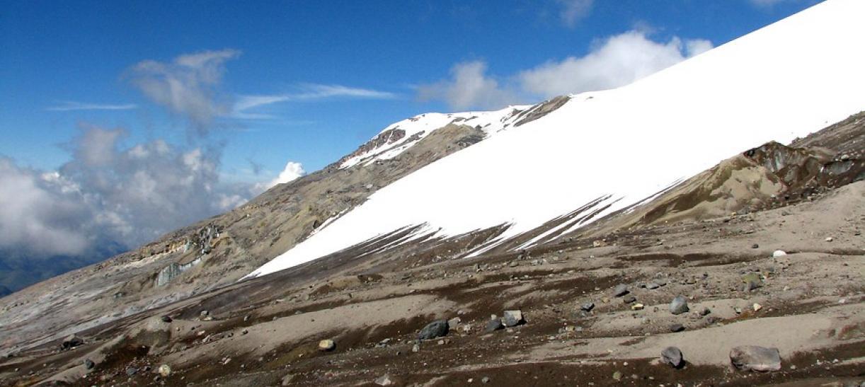 Parque los Nevados sujeto de derechos