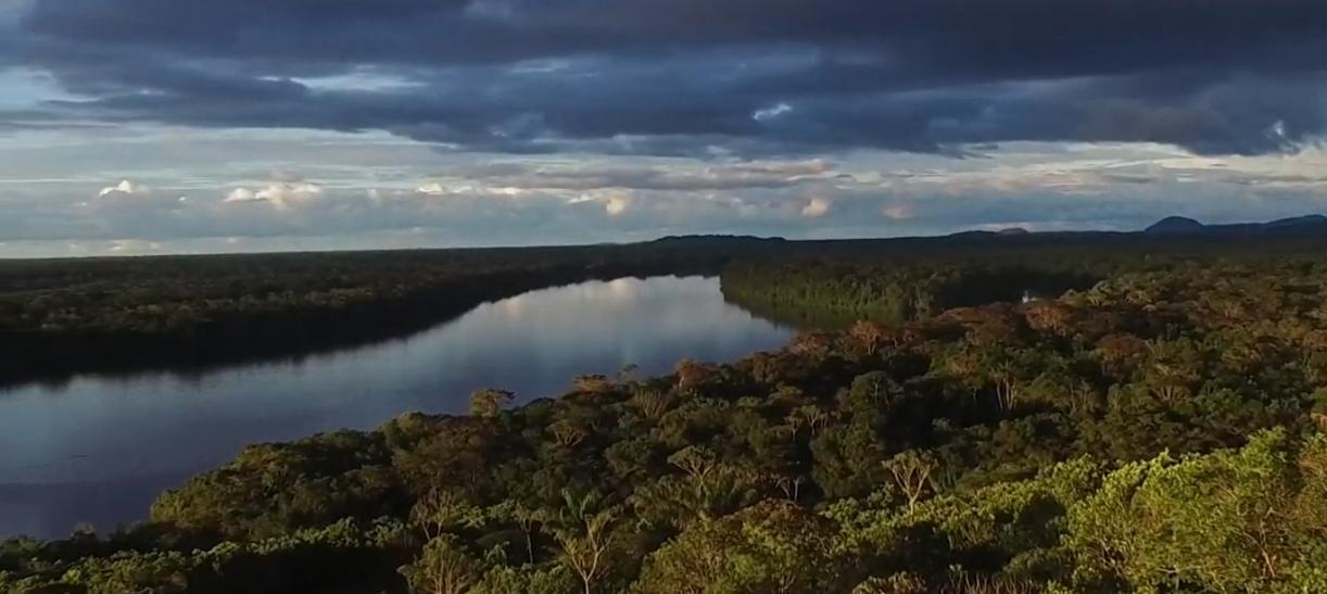 5 amenazas que enfrenta el Amazonas