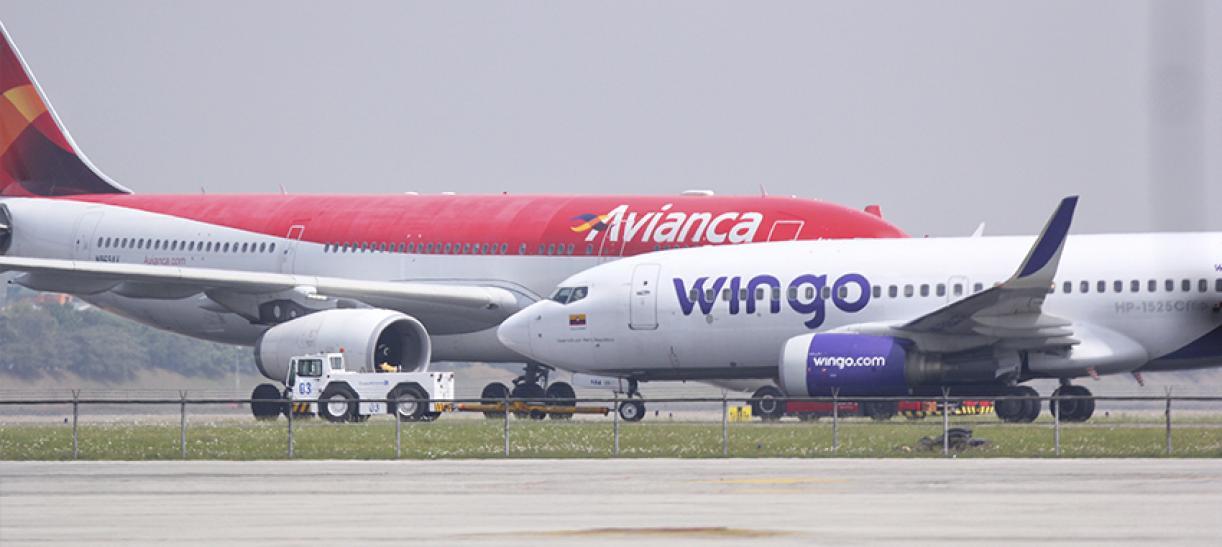 Aerocivil investiga a Avianca y Wingo
