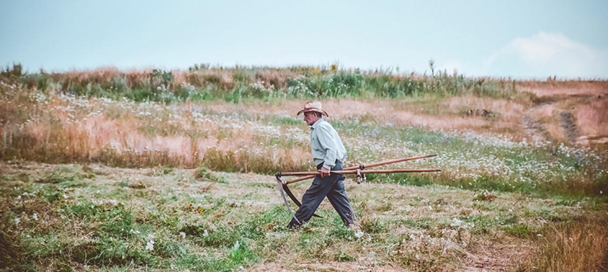 Innpulsa Agroproductiva