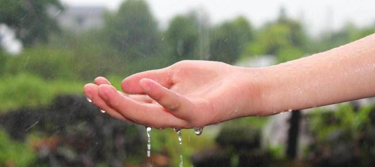 Imagen de una mano abierta con agua