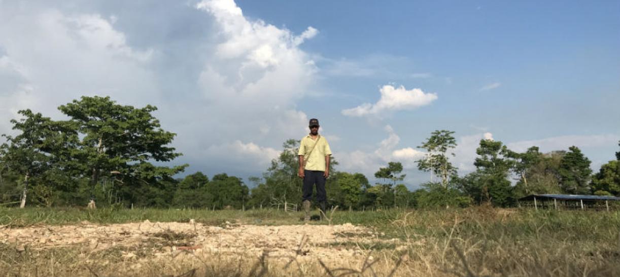 Imagen de un campesino en medio de los árboles