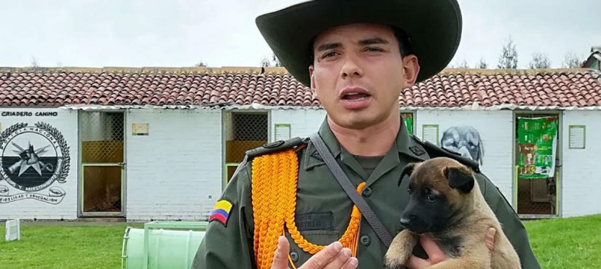 Imagen de un policía con un perro cachorro
