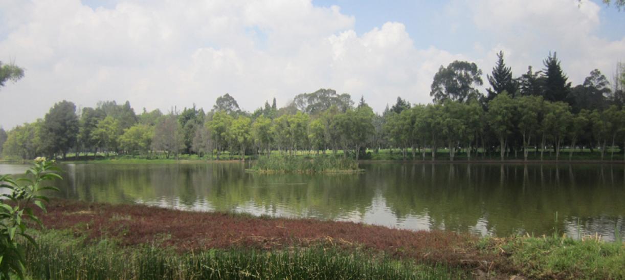 Río de Bogotá