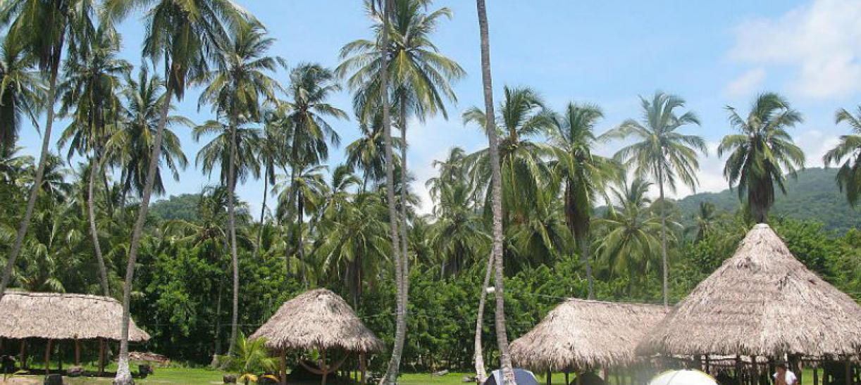 Imagen panoramica de las cabañas en el Parque El Tayrona
