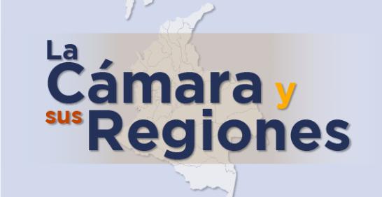 La Cámara y sus Regiones