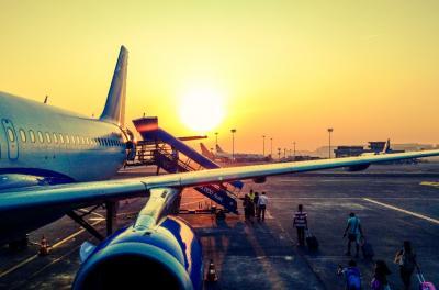 Lo que debes tener en cuenta para viajar con mascotas en avión