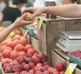 Gobierno busca evitar intermediarios para comercializar productos campesinos