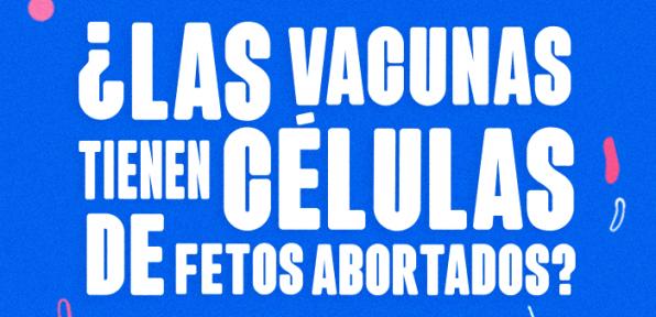 ¿Las vacunas tienen células de fetos abortados?