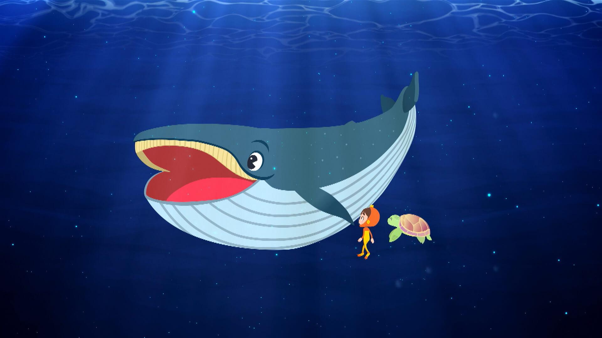 Ballenas y delfines para niños