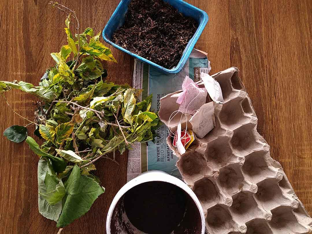 como hacer composta casera residuo seco