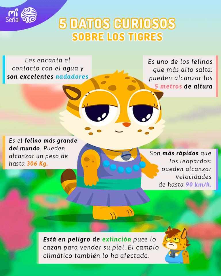 Curiosidades de los tigres