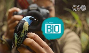 Serie documental - Colombia BIO