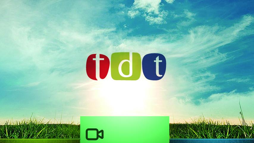 Terrestrial Digital Television