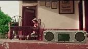 80 años con voz, serie gratis de los Medios Públicos