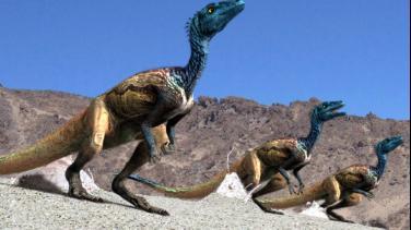 Reino de los dinosaurios
